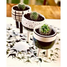 Geometric Series Pot Set - SK-19SKGEO007