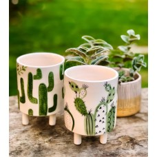 Cactus Patterned Pot - SK-19SKTRP020